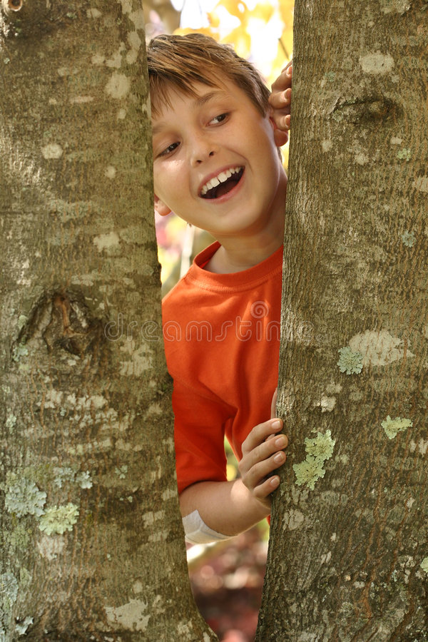 Smile, the air is fresh & pure. A young laughing boy looking through the bough of a tree covered in lichens. Lichens serve as indicators of air pollution. In royalty free stock photography
