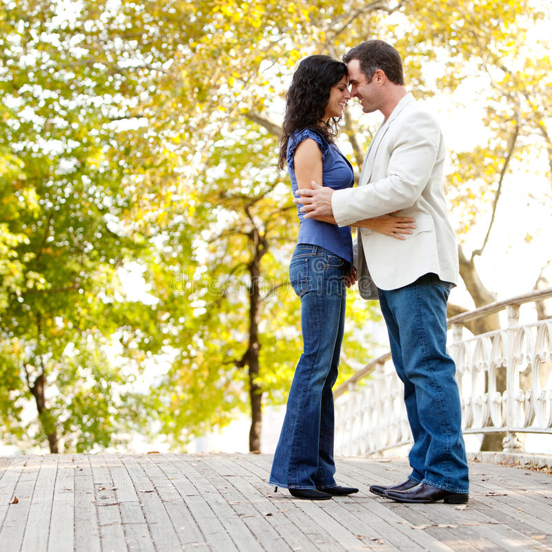 Download Smile Engagement Couple stock photo. Image of lifestyle - 11755952