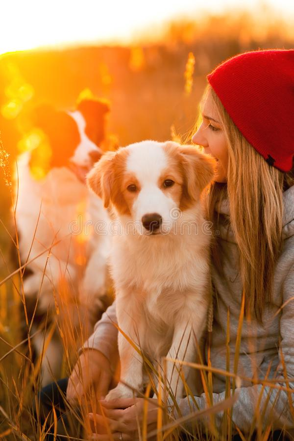 Smile girl with two cool border collie dog puppy lay on green field. sky sunset on background royalty free stock images