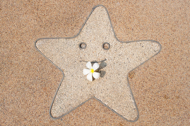 Download Smile star and  frangipani stock photo. Image of decoration - 18278350