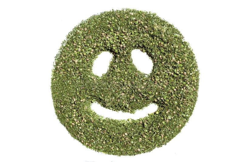 Smiley emoticon stock fotografie