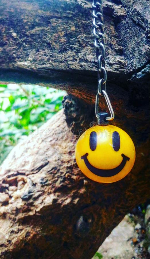 Smiley en la madera fotografía de archivo libre de regalías
