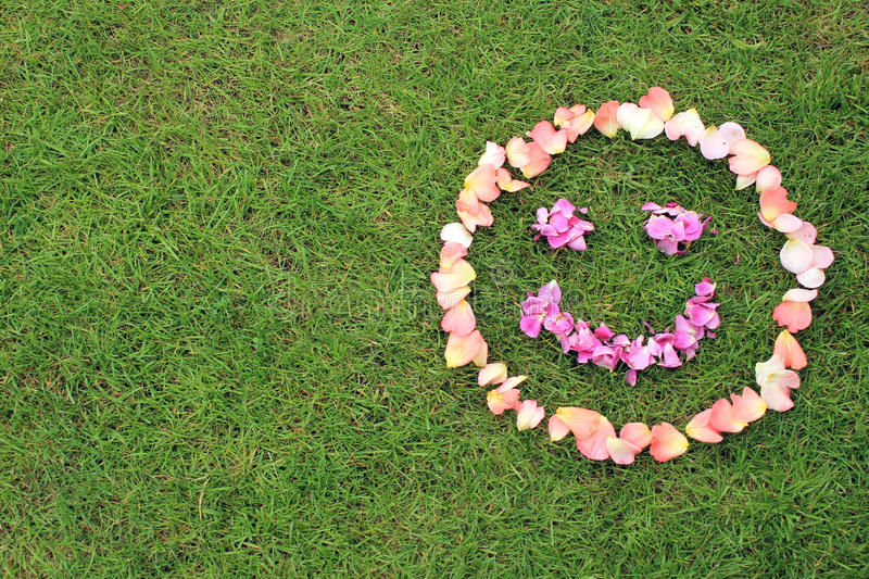 Smiley face emoticon from petals of rose on background of grass. Rose petals are pink and purple. Copy space is left stock images