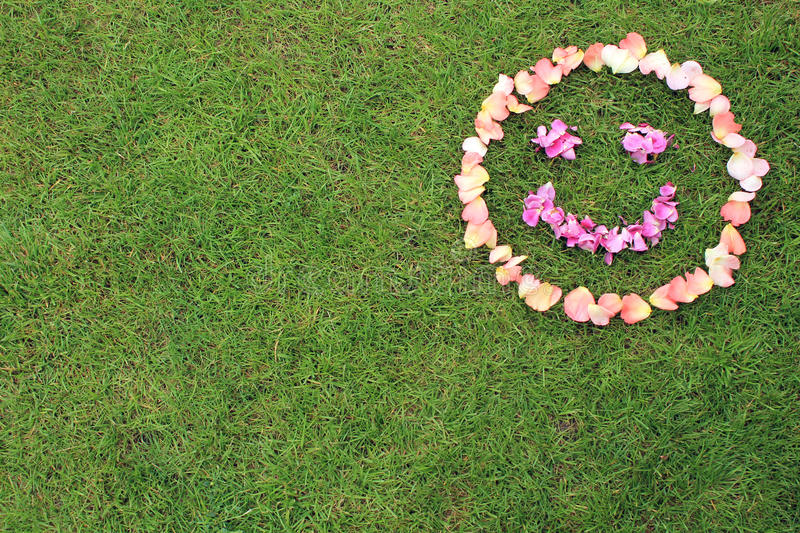 Smiley face emoticon from petals of rose on background of grass. Rose petals are pink and purple. Copy space is left and bottom royalty free stock image