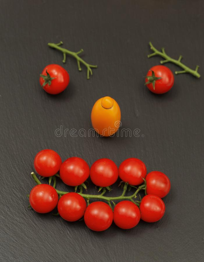 Smiley face with a watchful expression. Laying out parts of a human face with vegetables, namely tomatoes and tomato branches.  royalty free stock photos