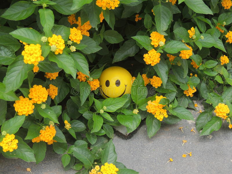 Smiley Toy royalty-vrije stock fotografie