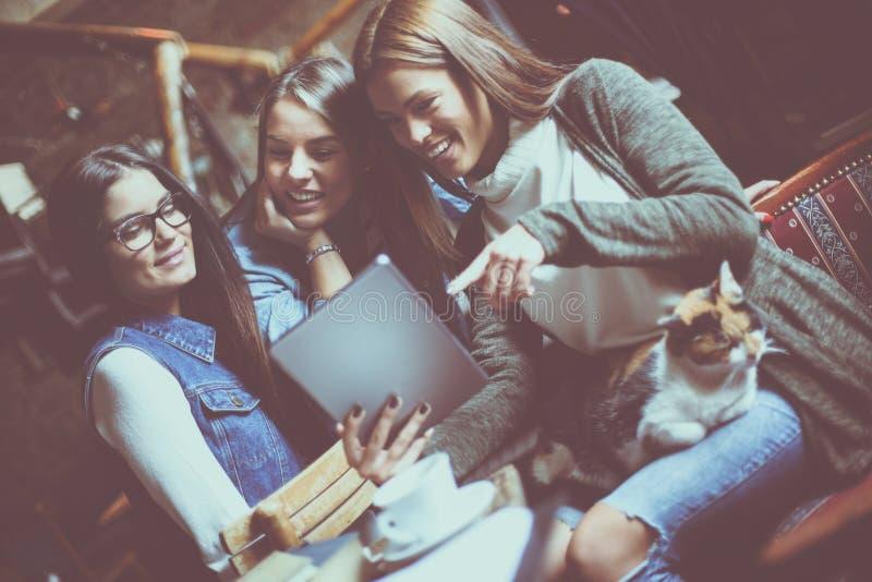 Smiley trzy dziewczyna ucznia w kawiarni używać cyfrową pastylkę i hav obrazy royalty free