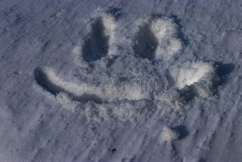 Smiley twarz rysująca w śniegu fotografia royalty free