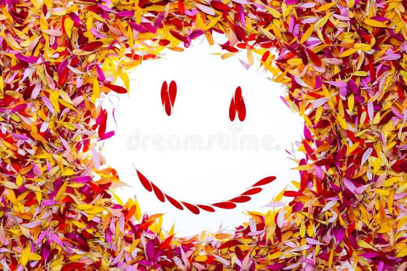 Smiley wśrodku płatków zdjęcie stock