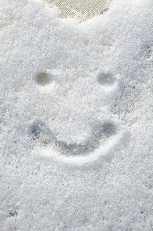 Smileyframsida i snö arkivfoton