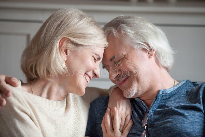 Happy sensual aged couple touching enjoying romantic moment royalty free stock image