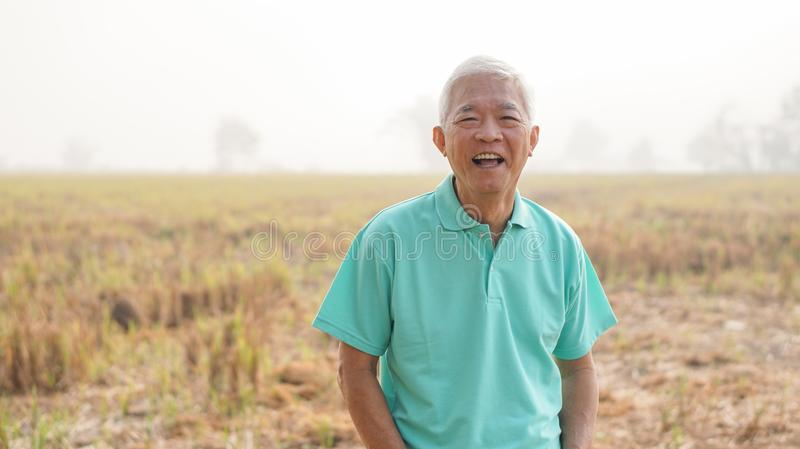 Smiling Asian elderly man own harvested rice field farm after re royalty free stock photos
