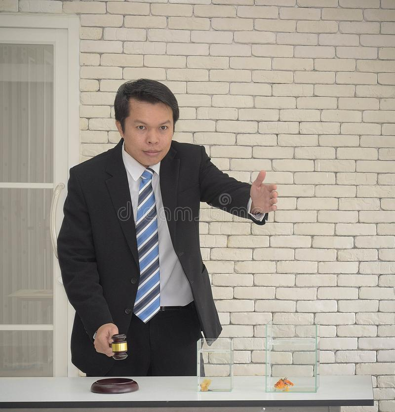 Smiling asian man in black suit with wooden gavel in hand wait people bidding auction concept.  royalty free stock photo