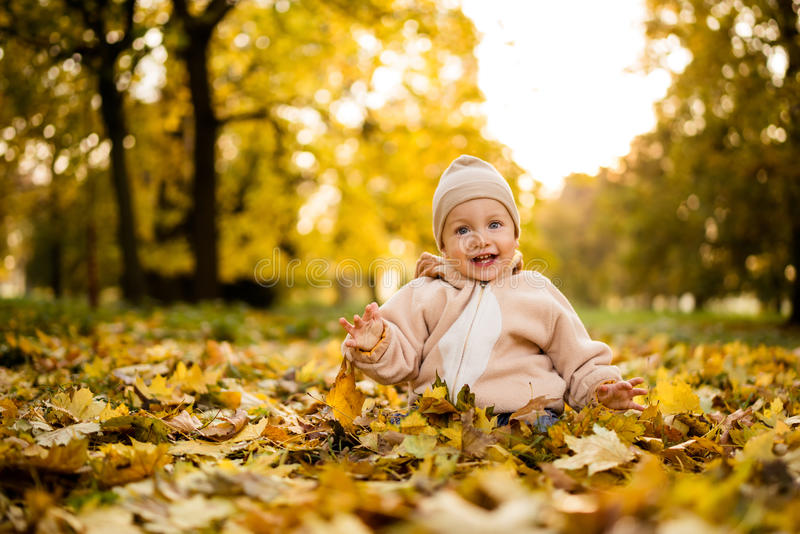 Smiling baby boy playing with maple leaves stock image