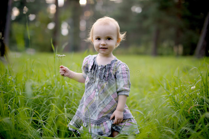 Smiling baby girl in a meadow royalty free stock image