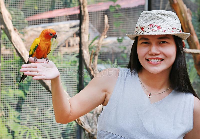 Smiling of beautiful Asian woman playing with sun conure parrots stock photography