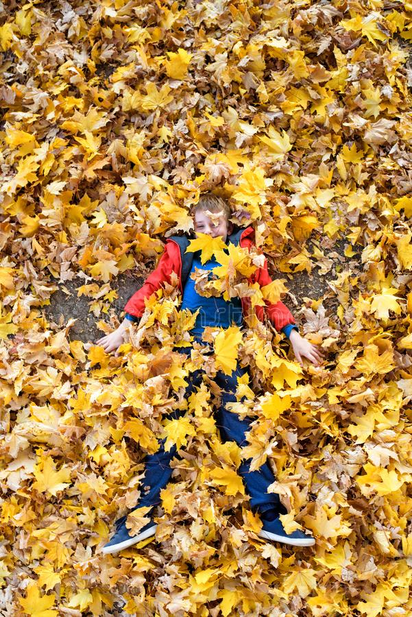 Smiling blond boy lies strewn with yellow autumn leaves. Top view. Autumn concept stock photography