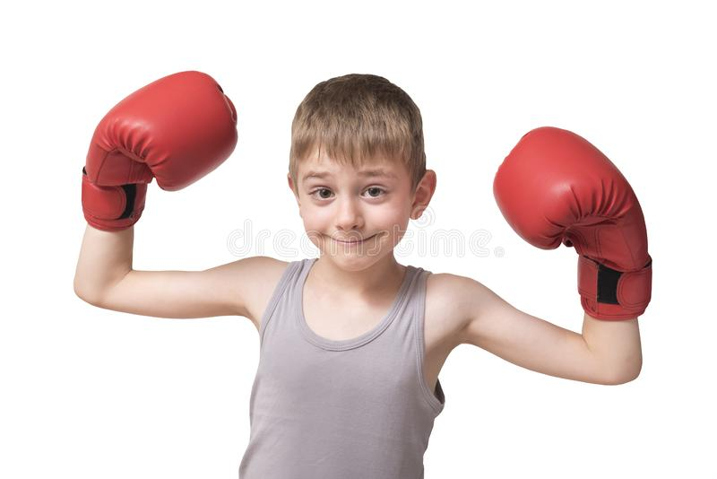 Smiling boy in boxing gloves. Isolate.  royalty free stock photography
