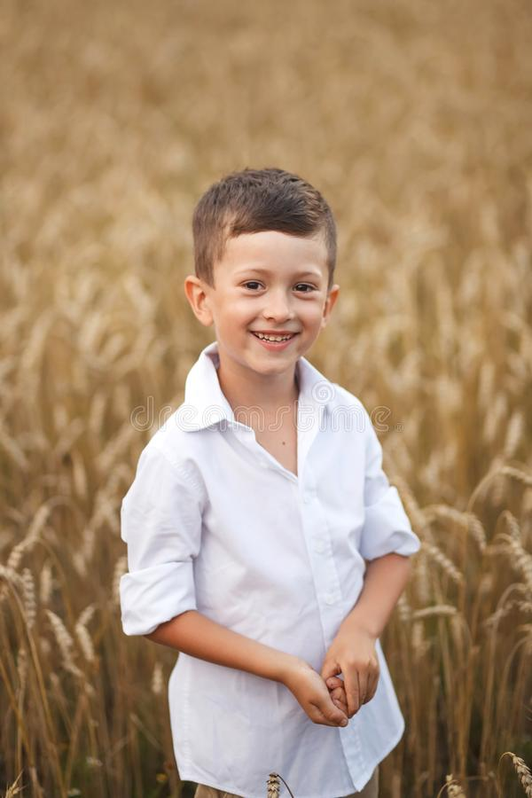 Smiling boy in summer field. The concept of freedom and happy childhood stock images