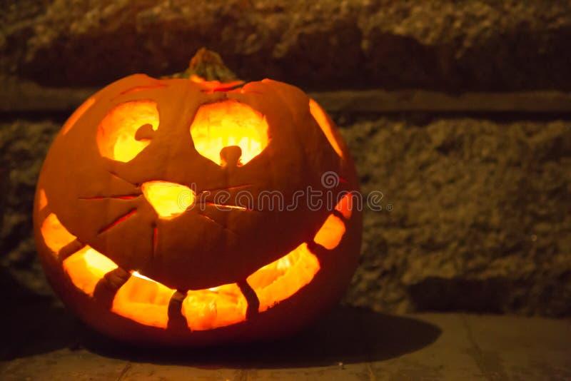 Smiling cat face carved halloween pumpkin stock photos