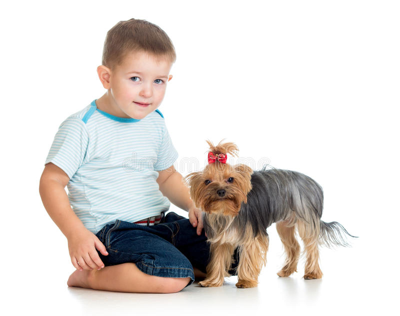 Smiling child playing with a puppy dog. On white royalty free stock image