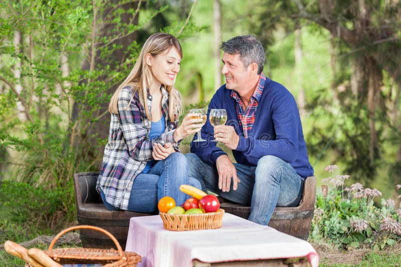 Smiling Couple Toasting Wine Glasses At Campsite royalty free stock photos
