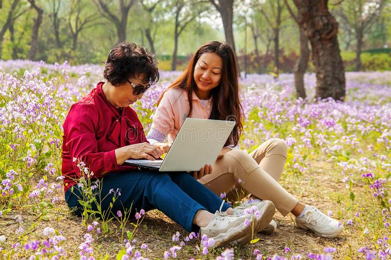 Smiling daughter showing laptop computer to mother while sitting in a park. royalty free stock photo