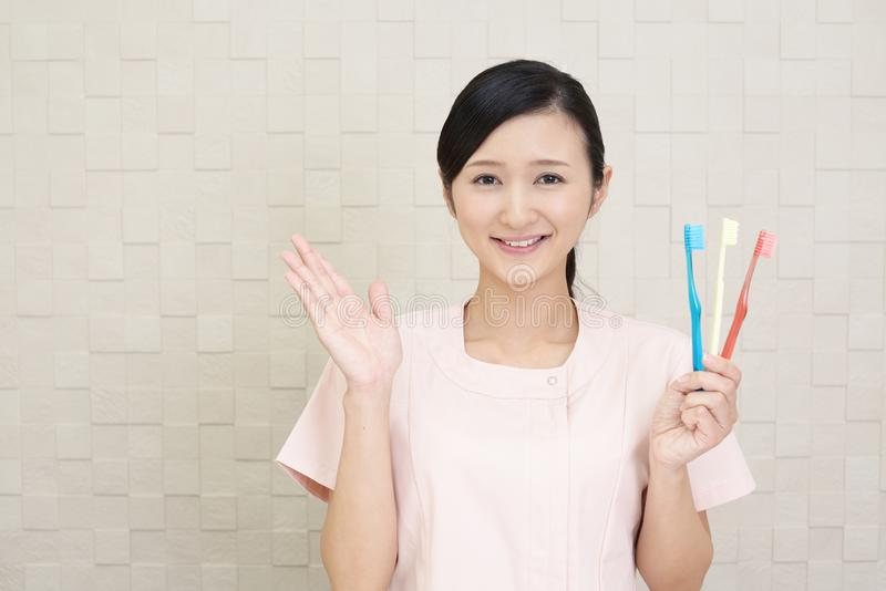 Smiling dental hygienist. With toothbrushes royalty free stock image