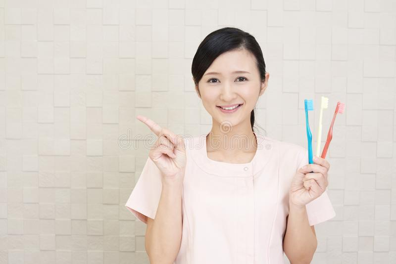Smiling dental hygienist. With toothbrushes royalty free stock images