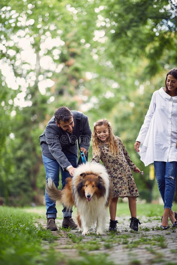 Smiling family is taking out a dog for a walk royalty free stock photos