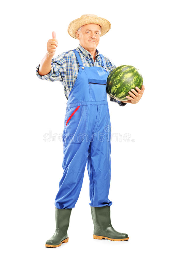 Smiling farmer holding a watermelon and giving thumb up stock photography