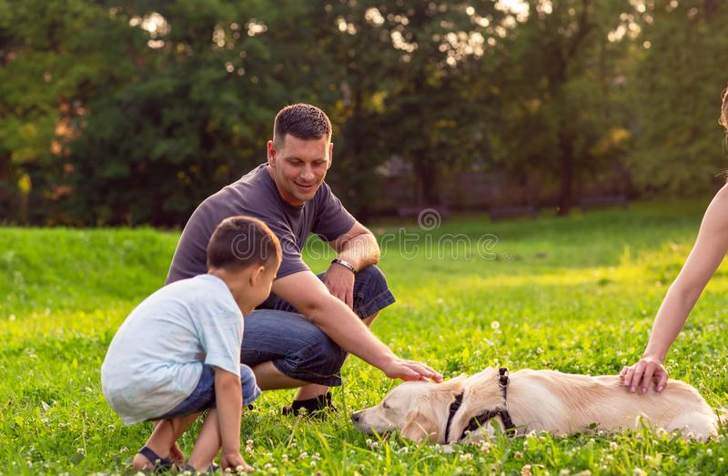 Father and his son playing with dog in park -happy family is having fun with golden retriever . royalty free stock image