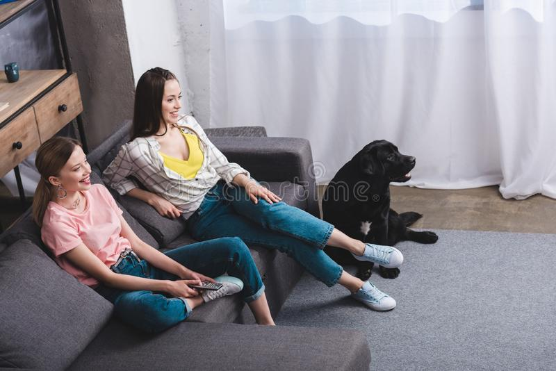 Smiling female friends with remote controller watching tv and black retriever sitting. Near at home stock image