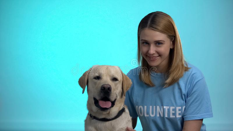 Smiling female volunteer with cute pedigreed dog looking at camera, help animals royalty free stock image