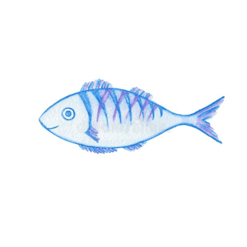 Smiling fish watercolor pencils drawing. Smiling blue and violet dorado fish watercolor pencils drawing royalty free illustration