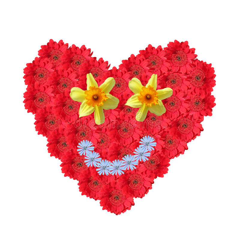 Smiling flower heart. Flower heart made of cutout red gerbera daisies, smiling face with corn flowers and narcissus, isolated on white background stock images