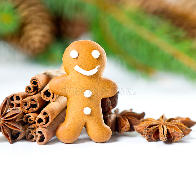 Smiling gingerbread man with christmas spices. Selective focus royalty free stock photo