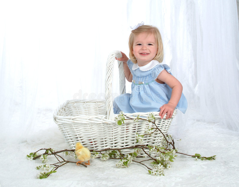 Smiling Girl in Basket with Chicken. Girl in blue sitting in basket and chicken in front of white background royalty free stock photography