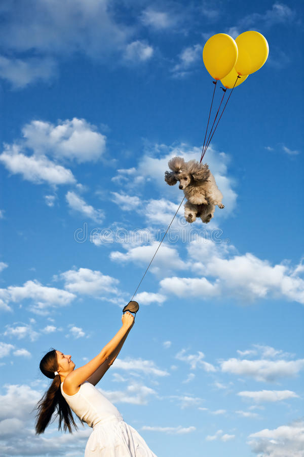 Smiling Girl And Her Flying Poodle Dog Royalty Free Stock Photography
