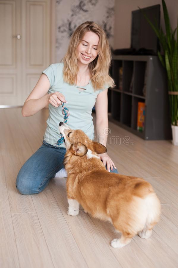 Smiling girl playing with her Welsh Corgi Pembroke puppy, happy cute dog. royalty free stock image