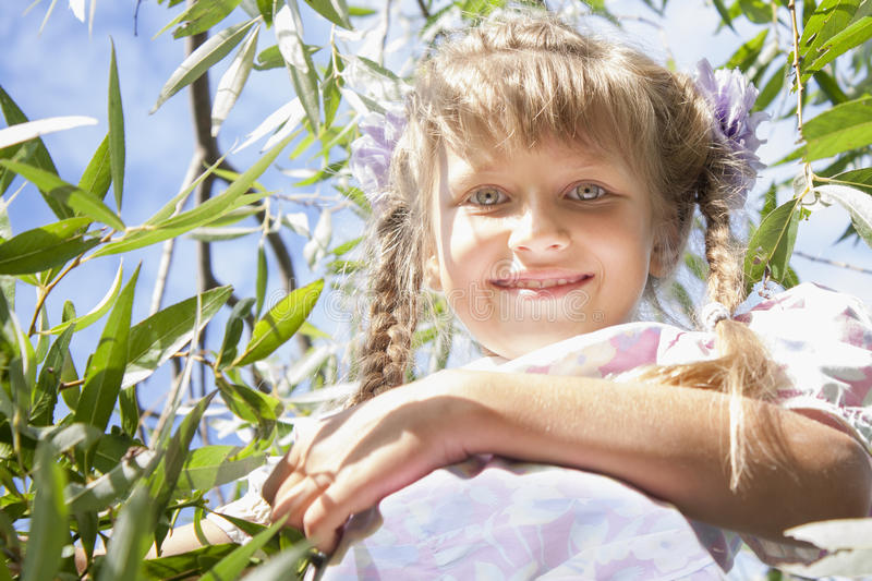 Smiling girl. Small smiling girl on willow branches stock photography