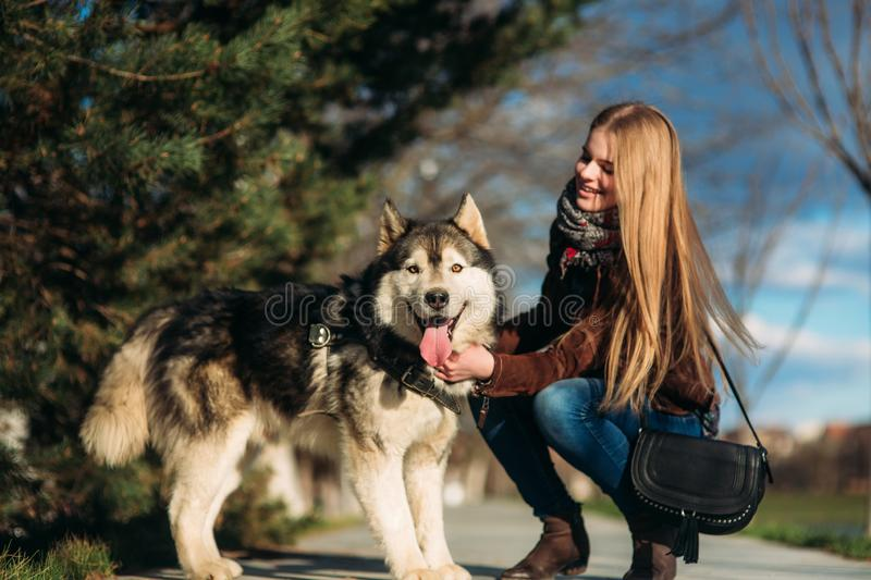 A smiling girl is walking with a dog along the embankment. Beautiful husky dog.  royalty free stock image