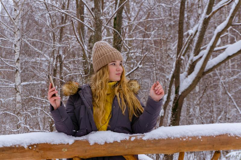 Girl online in winter park royalty free stock photography