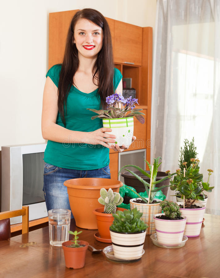 Smiling girl working with viola flowers in pots. In home stock images
