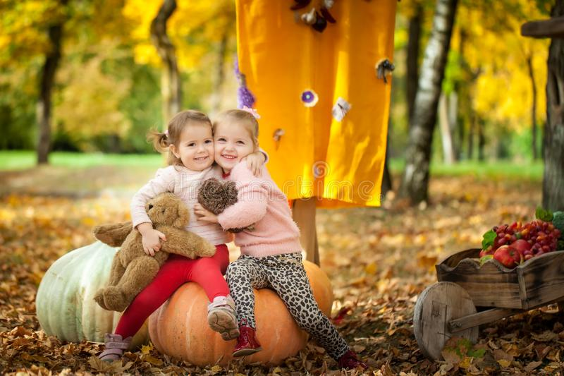 Smiling girls in the autumn park royalty free stock image