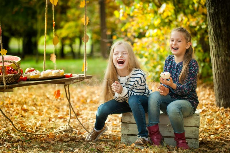 Smiling girls in the autumn park stock photography
