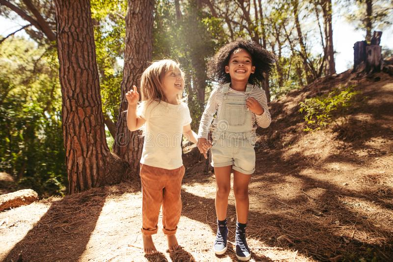 Smiling girls having fun in forest royalty free stock image
