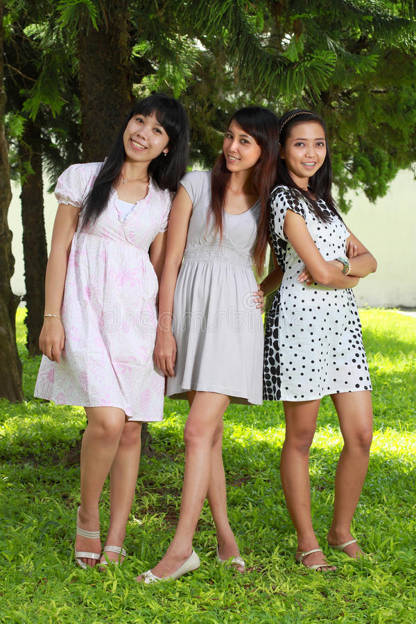 Download Smiling Happy Girl Friends Group Smiling Stock Photo - Image: 17881774
