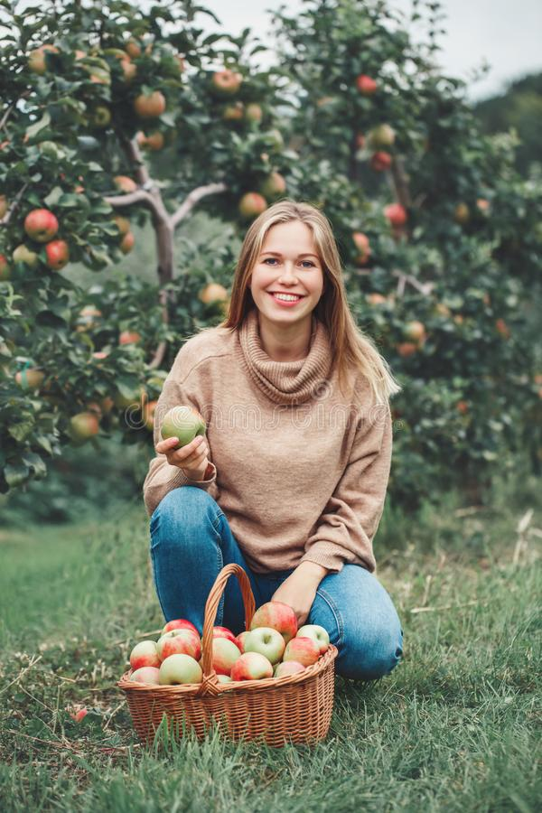 smiling happy young blonde Caucasian woman on apple farm with wicker basket full of fruits royalty free stock photography