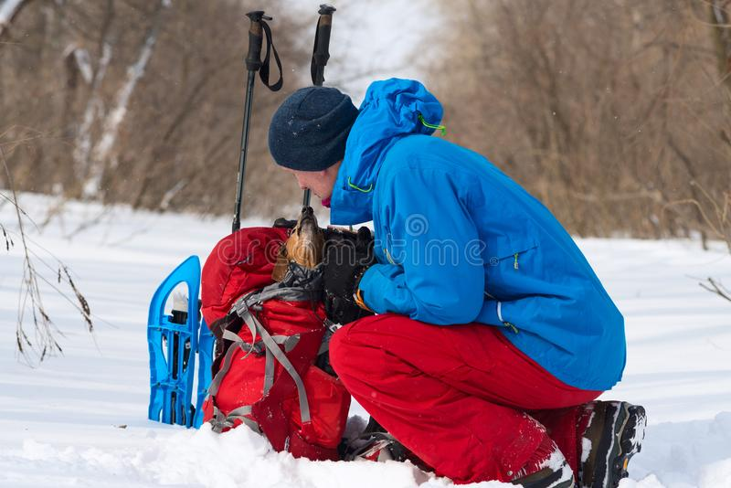Smiling hiker talking to funny small dog who sits in a his backpack stock image